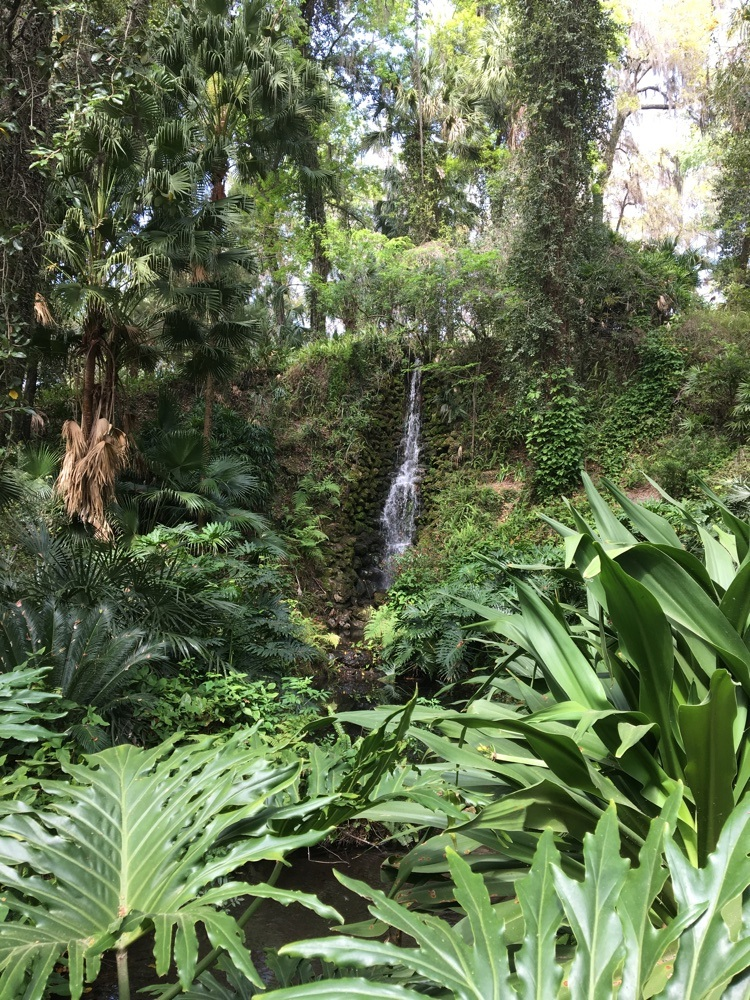 another waterfall at rainbow springs state park
