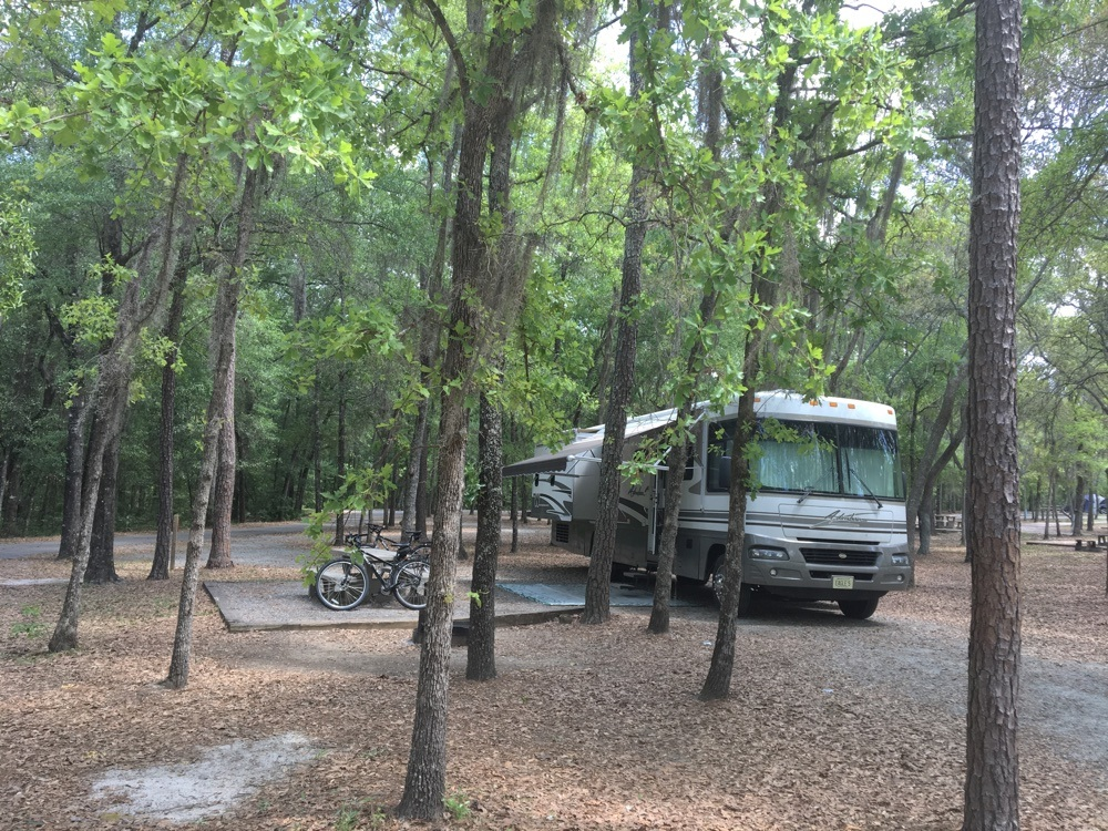 shaded campsite at general coffee state park.